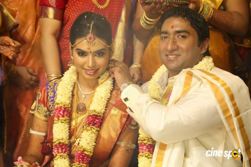 TG Thyagarajan Son Sendhil And Dhasha Marriage Photos